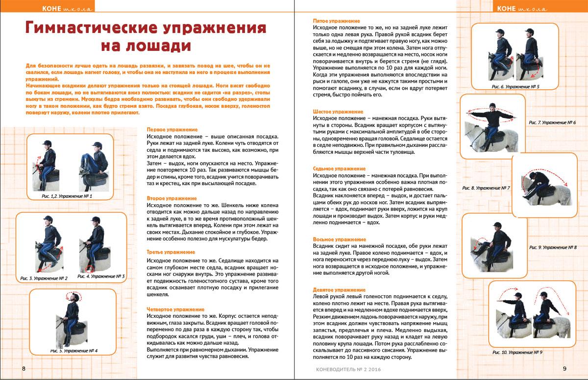 конешкола-122016