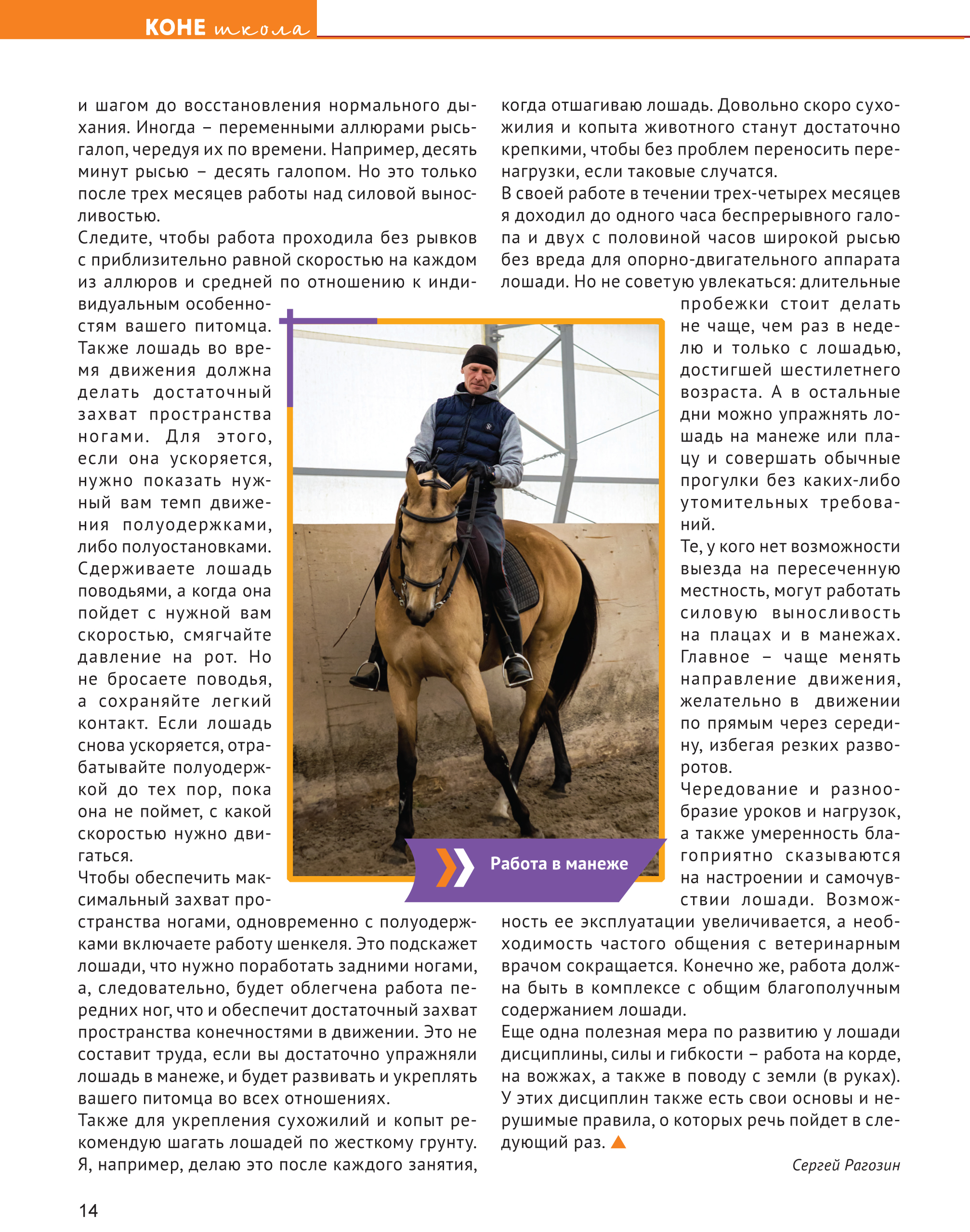 Book KONEVODITEL 62018 print-14