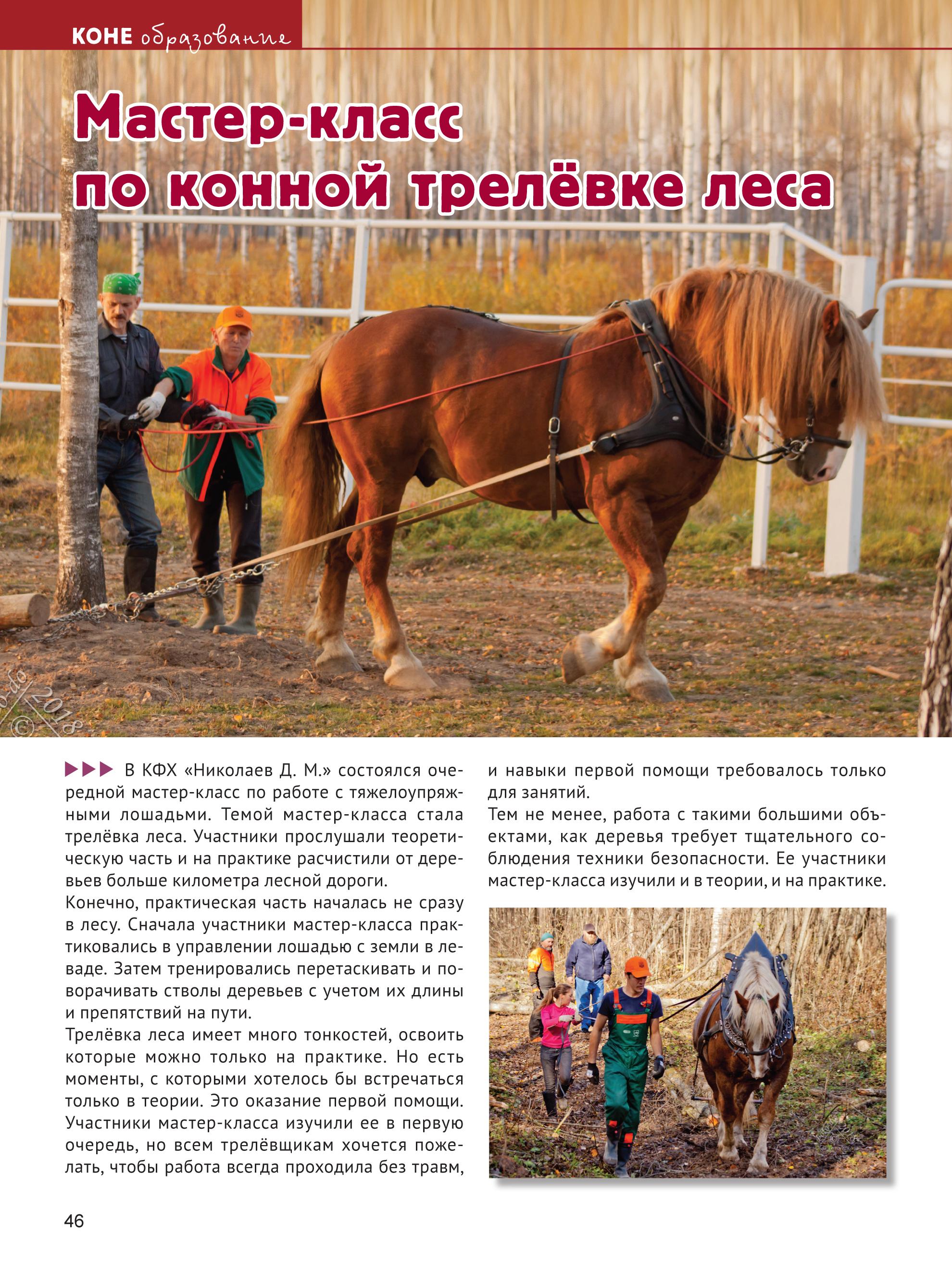 Book KONEVODITEL 62018 print-46