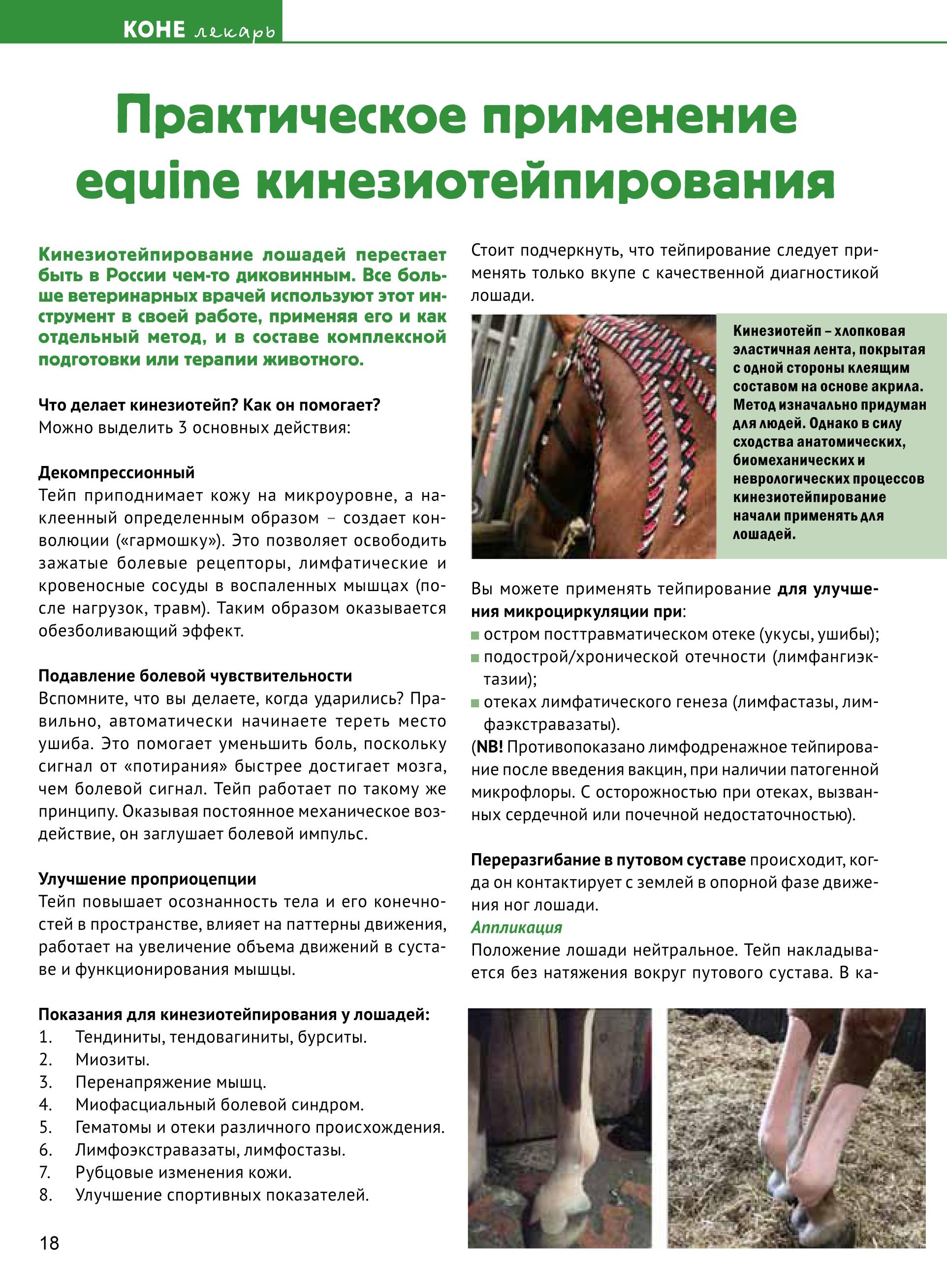 Book КОНЕВОДИТЕЛЬ 4_ proof-18